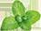 dentiblanc-fresh-logo.png